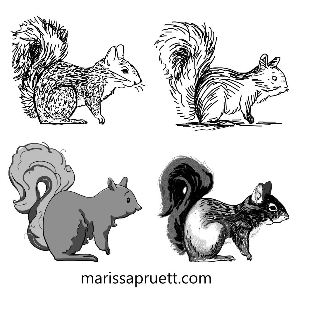 squirrel styles4