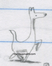 kangaroo dog