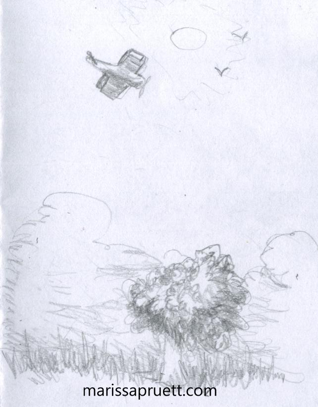 plane over tree