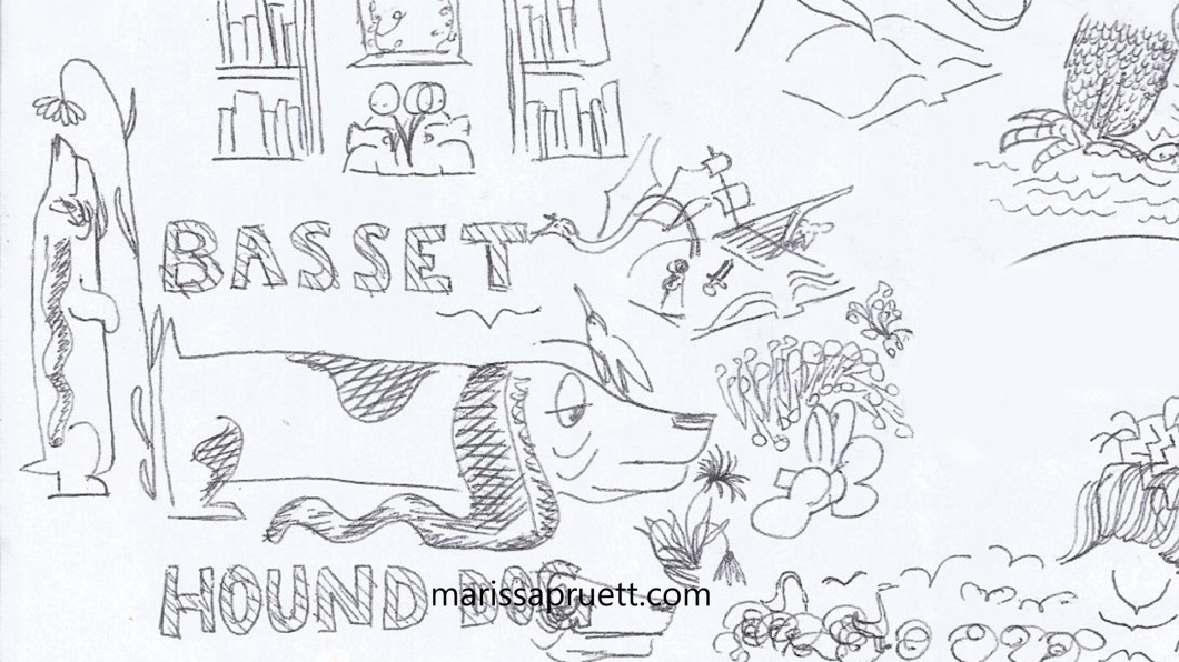 bassetthoundsketches