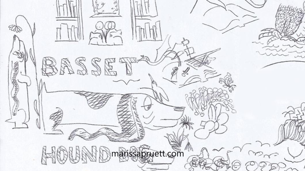 bassetthoundsketches