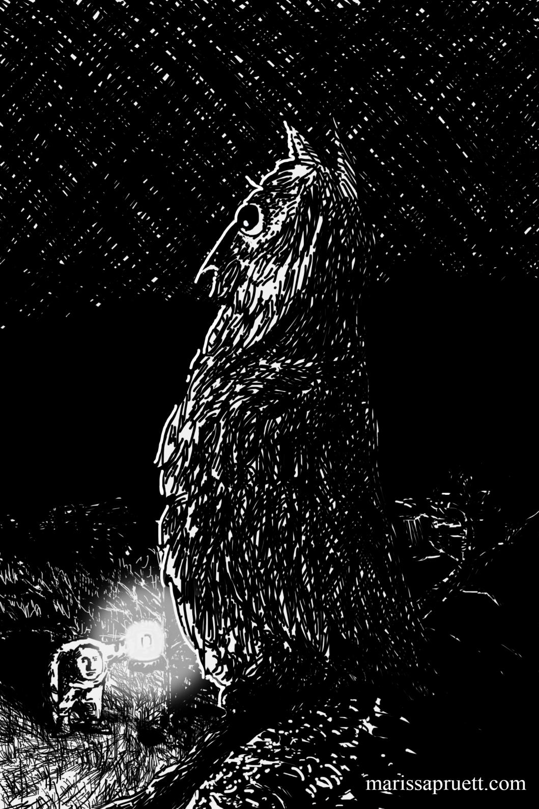 owl crosshatch 13wweb